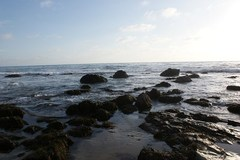 crystal-cove1.jpg