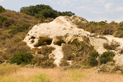 Aliso-and-Wood-Canyons-Wilderness-Park.jpg