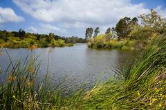 Laguna-Niguel-Regional-Park.jpg