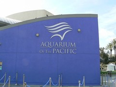 aquarium_of_the_pacific.jpg