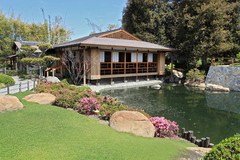 van-nuys-japanese-garden.jpg