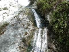 monrovia-canyon12.JPG