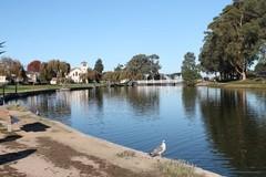 El-Estero-Park.JPG