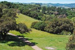 Westwood-Hills-Park.jpg