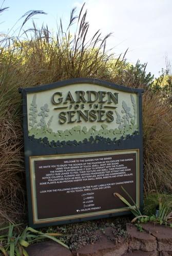 South-Coast-Botanic-Garden-09.JPG