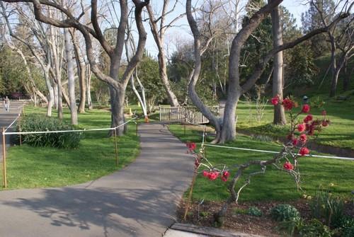ucr-botanical-garden2.JPG