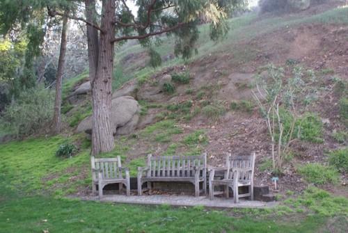 ucr-botanical-garden3.JPG