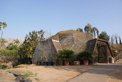 ucr-botanical-garden4.JPG