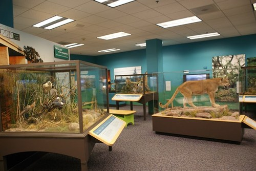 san-diego-museum-of-natural-history-02.jpg
