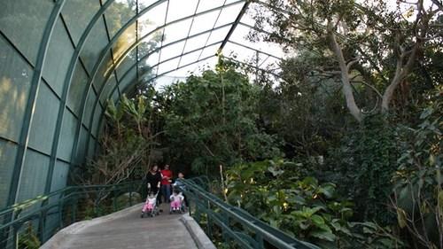 san-diego-zoo-05.jpg
