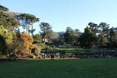 san-francisco-botanic-garden1.JPG