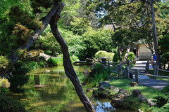 san-francisco-botanical-garden.jpg