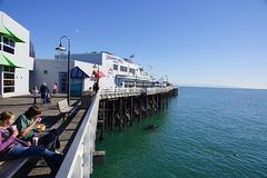 municipal_wharf_santa_cruz.jpg
