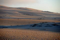 Guadalupe_Dunes.jpg