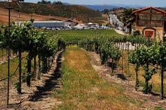 Van-Roekel-Winery.jpg