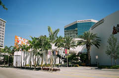 Museum-of-Art-Fort-Lauderdale.jpg