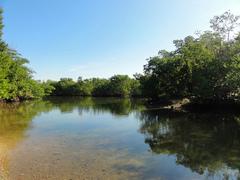 Oleta-River-State-Park.jpg