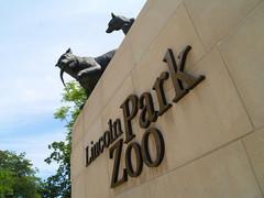 Lincoln-Park-Zoo.jpg