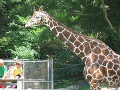 Indianapolis_Zoo.jpg