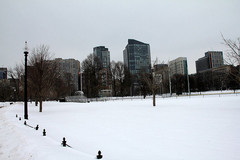 boston-common-winter.jpg