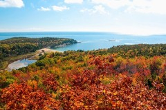 acadia-national-park-foliage.jpg