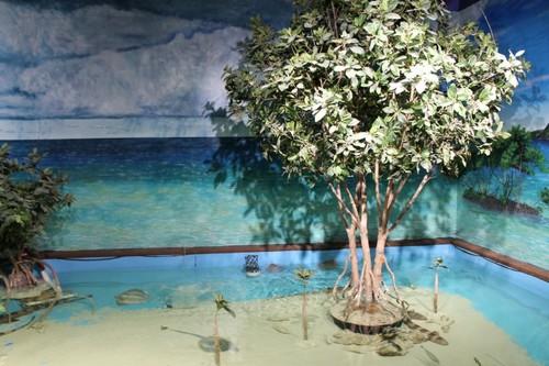 ABQ-Aquarium12.JPG