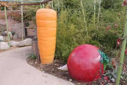 ABQ-Botanic-Garden1.JPG