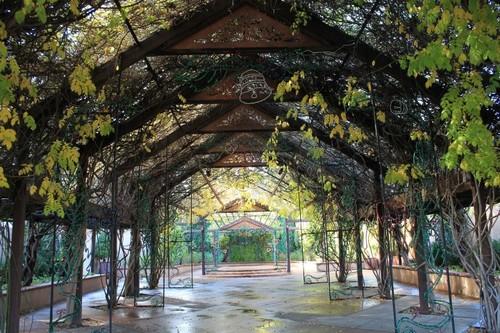 ABQ-Botanic-Garden6.JPG