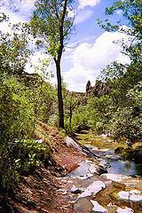 Beaver_Dam_State_Park.jpg