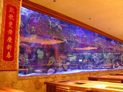 mirage_aquarium.jpg