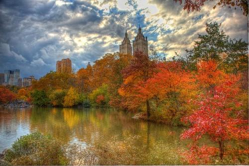 central-park-foliage.jpg