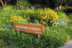 queens-botanical-garden-1.jpg