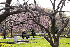 queens-botanical-garden-6.jpg