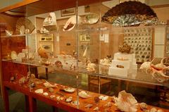 Staten-Island-Museum.jpg