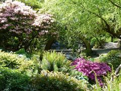 Crystal-Springs-Rhododendron-Garden.jpg