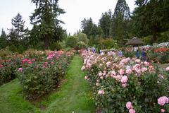 International-Rose-Test-Gardens.jpg