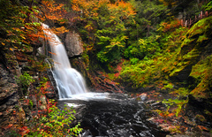 bushkill_falls01.jpg