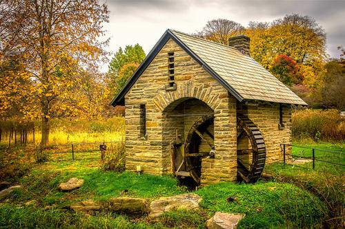 The-Morris-Arboretum.jpg