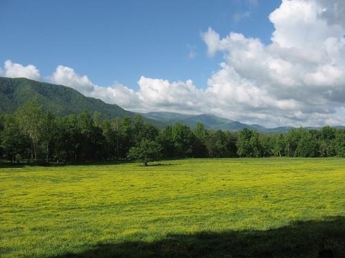 Great-Smoky-Mountains4.jpg