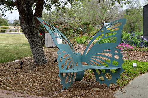 South Texas Botanical Gardens Nature Center
