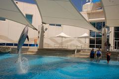 Texas-State-Aquarium.jpg