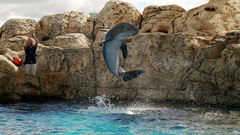 texas-state-aquarium02.jpg