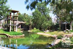El_Paso_Zoo.jpg