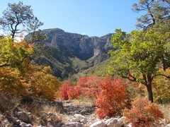 Guadalupe-Mountains-National-Park1.jpg