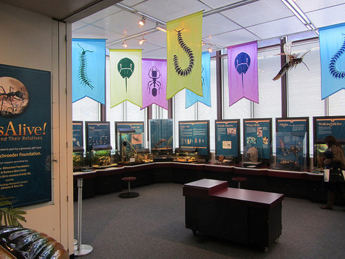MilwaukeePublicMuseum2.jpg