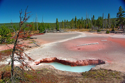 YellowstoneNationalPark5.jpg