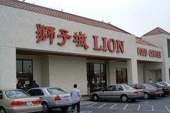lion_food_center.jpg