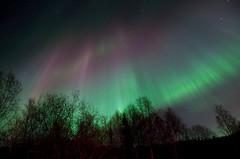 Anchorage-Fall.jpg