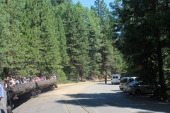 Sugar-Pine-Railroad1.JPG