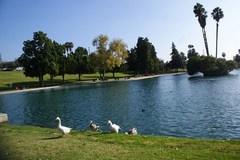 lamirada-park2.jpg